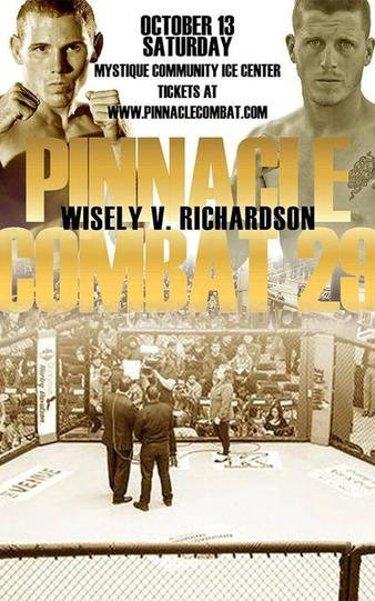 Pinnacle Combat 29