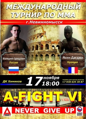 A-Fight MMA 6