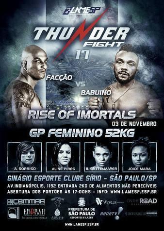 Thunder Fight 17