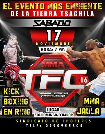 Torashi Fighting Championship 16 online
