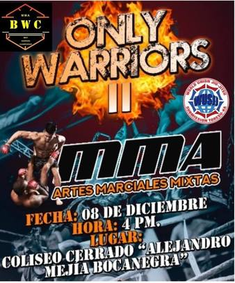 Only Warriors 2