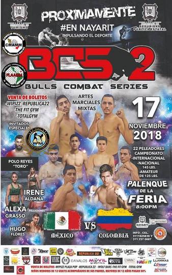 Bulls Combat Series 2