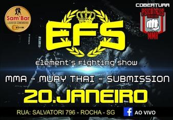 EFS 1