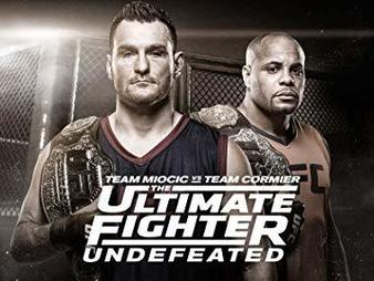 The Ultimate Fighter Season 27