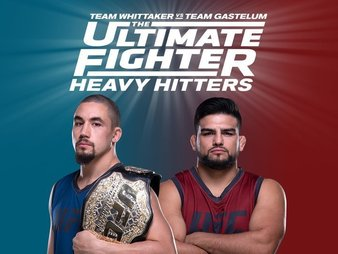 The Ultimate Fighter Season 28