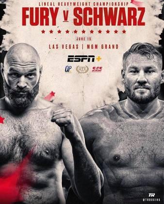 Fury vs. Schwarz