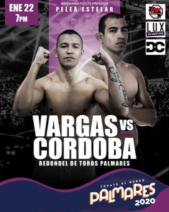 Mandarina Fights 19