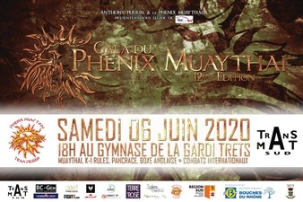 Gala du Phenix 12 (cancelled)