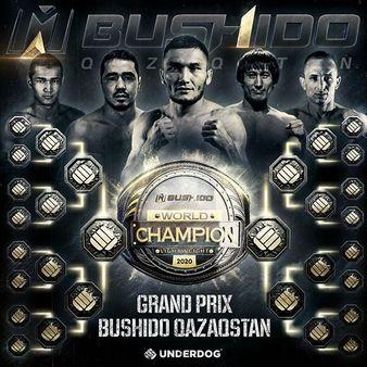 Bushido Fighting Championship