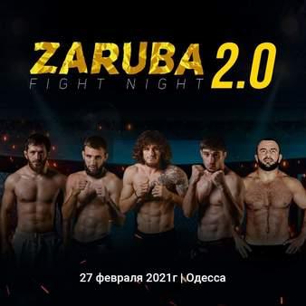 ZFN 2.0