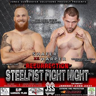 Steelfist Fight Night 74