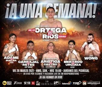 Ortega vs. Rios