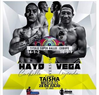 Hayo vs. Vega