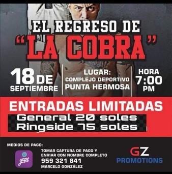El Regreso de Cobra