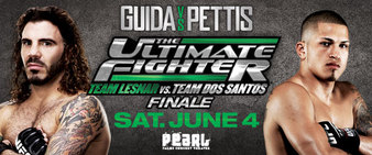 The Ultimate Fighter 13 Finale