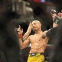 The MMA Genie